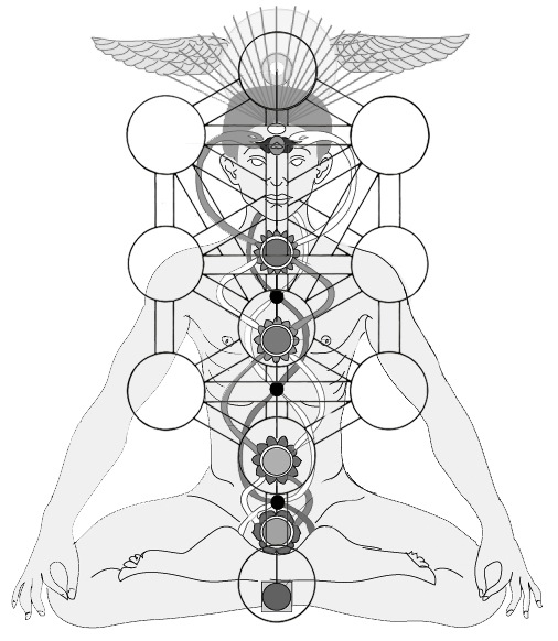 [Image: chakra-and-Tree.jpg]